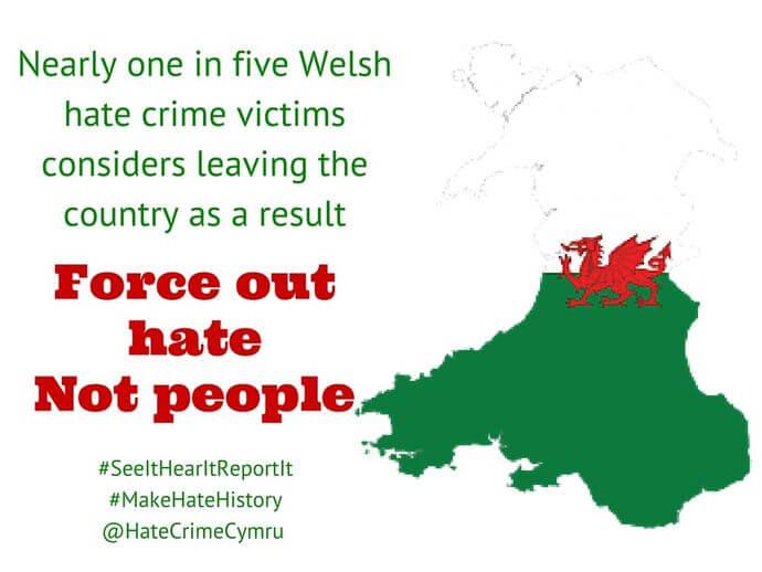 True Vision Cymru
